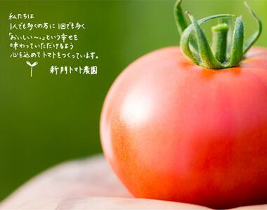 新門トマト農園